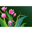 romantic gentle flowers background design vector image vector image