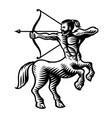 sagittarius sign vector image