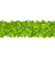 seamless border with green leaves vector image vector image
