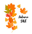 set of autumn yellow leaves and inscription autumn vector image