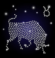 sign of the zodiac taurus is the starry sky vector image vector image