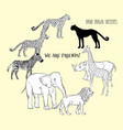 zoo animals background with savanna animals vector image