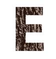 bark letter E vector image vector image