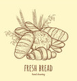 fresh bread vector image