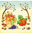 Fruit and vegetables in Autumn vector image