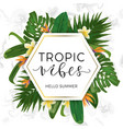 modern trendy template with tropical leaves and vector image