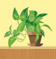 Office plant flat style Digital image vector image