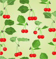 Seamless texture cherry fruits and leaves vector image vector image