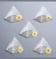tea pyramidal bags realistic set vector image