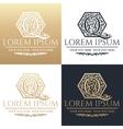 Calligraphic design element Golden brand vector image