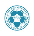 round emblem of soccer championship vector image