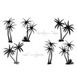 tropical palm black silhouettes set vector image vector image