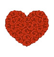 heart from red roses vector image