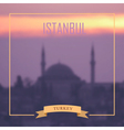 Istanbul background vector image