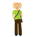 cat student in green t-shirt fashionable pants vector image vector image