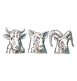 Farm animals icon set Pig cow and goat heads vector image vector image