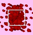 red rose petals valentine s card background vector image vector image