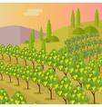Rural Landscape with Vineyard vector image