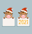 2021 year cute cartoon baby cow ox cub blank paper vector image