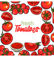 banner framed with red tomatoes with square place vector image vector image