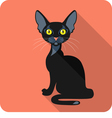 Bombay Black Cat icon flat design vector image vector image