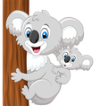 Cartoon baby koala on mother back embracing tree vector image vector image