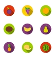 Fruits set icons in flat style Big collection of vector image vector image