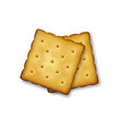 realistic 3d square delicious salty cookies vector image