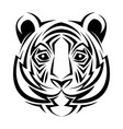 tiger tribal tatto animal creativity design vector image