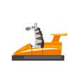 zebra riding bumper car funny adorable animal vector image vector image