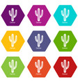 cactus icons set 9 vector image