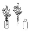 line style floral bouquet in a vase jar vector image vector image