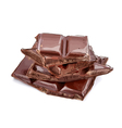 Pieces of chocolate vector image