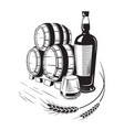 sketch whiskey bottle and glass and barrel vector image vector image