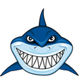 smiling shark cartoon vector image