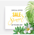 summer sale banner with tropic leaves vector image vector image