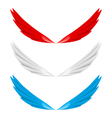 Abstract colorful wings vector image
