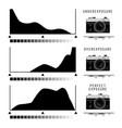 camera histogram symbols vector image vector image