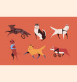 collection of funny disabled dogs isolated on vector image