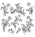 floral branches set vector image