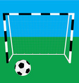 Football gate and ball vector image vector image