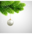 Green Pine branches with white ball vector image