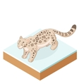 Isometric Snow Leopard vector image vector image