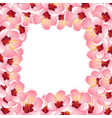 momo peach flower blossom border background vector image vector image
