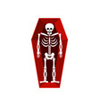 skeleton in coffin isolated religion human death vector image