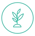 Sprout line icon vector image vector image