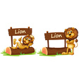 Two lions standing by the wooden sign vector image vector image