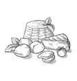 cheese ricotta mozzarella hand drawn set engraving vector image
