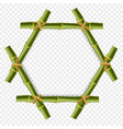 hexagonal green bamboo poles frame with rope and vector image