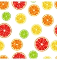 Seamless pattern with citrus fruits slices Mix of vector image